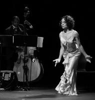 Raisin' Cane: A Harlem Renaissance Odyssey starring Jasmine Guy and the Avery Sharpe Trio.