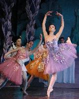 Moscow Festival Ballet of Russia